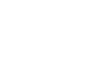 IWV Insurance Agency - Logo 800 White